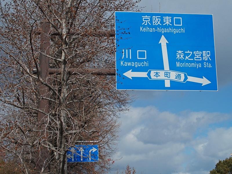 Kouhouenzaka10